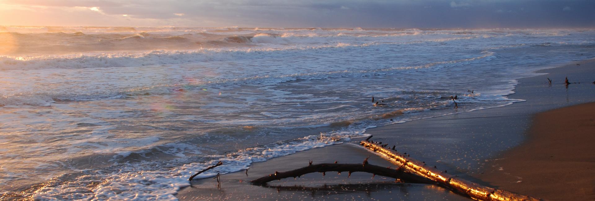 Maremma Sea